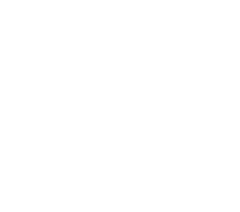Hamilton Airport Logo